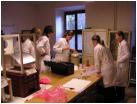 Nácvik přípravy inseminační dávky býků