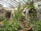 Tropický pavilon